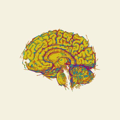thomas-knauer-sews-brain
